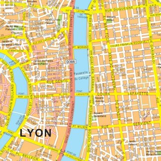 lyon vector map