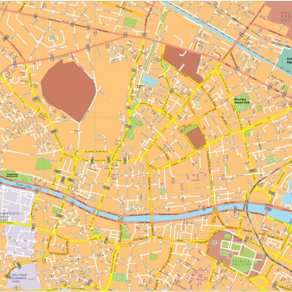 Dublin vector map