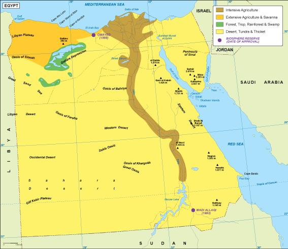 Egypt vegetation map