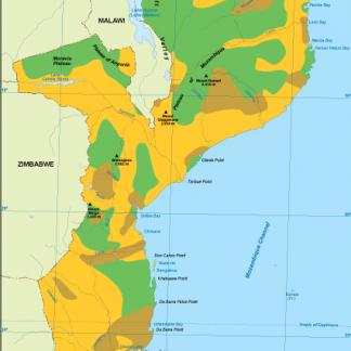 Mozambique vegetation map